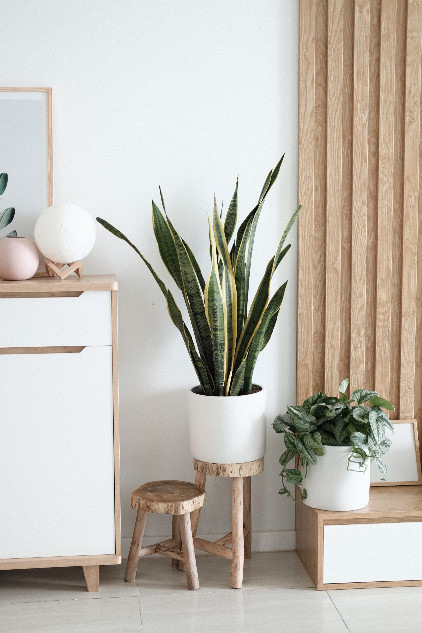 6 Practical Ways to Create Positive Vibes in Your Home and Enhance Your Wellbeing